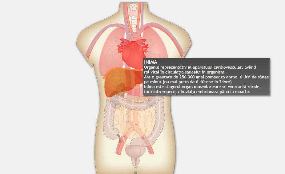 cum arată corpul în greutate)